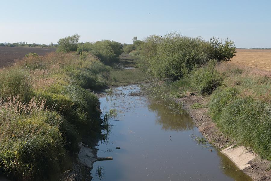 Platones upe netālu no Jonišķiem (LT), kur pēdējās dienās ir ganījusies Sarma