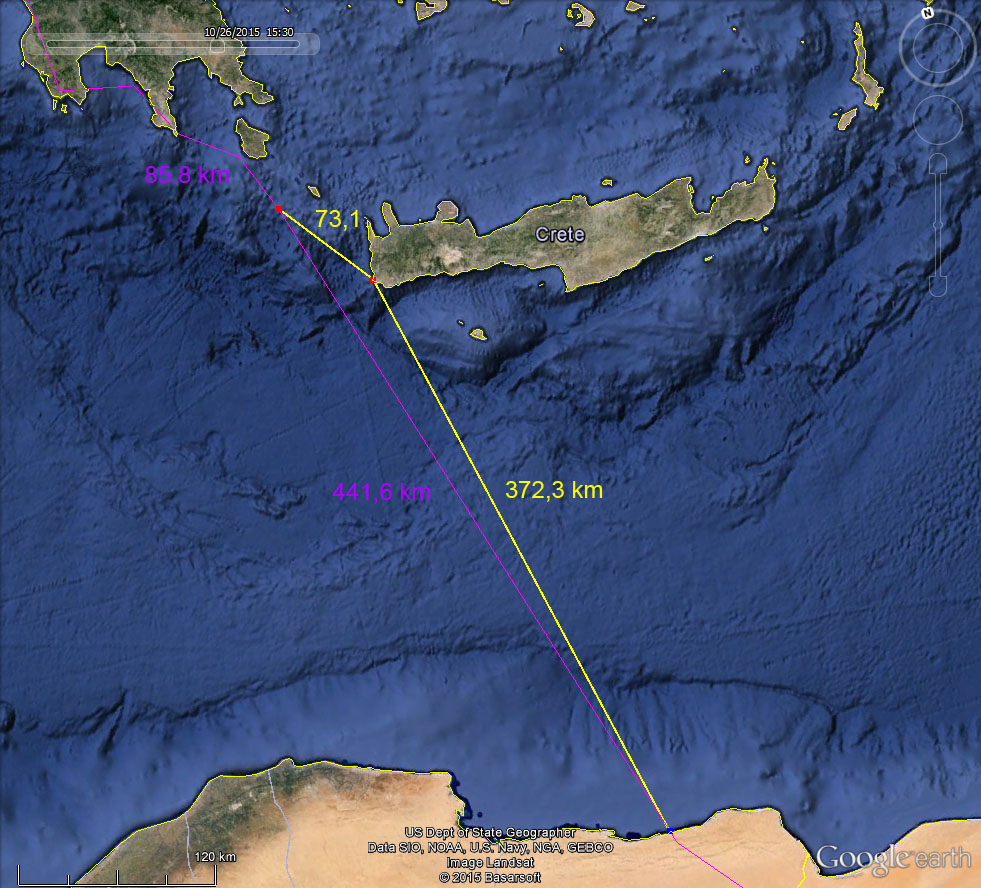 The purple line shows locations as fixed by the tag. The yellow line presents speculation of a possible De-tour to stay overnight on land.