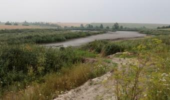 Sarmas ilglaicīgā barošanās vieta - nolaists zivju dīķis Volīnijā starp Senkevičvku un Šklinu.Gorokhovskiy rayon, Volynskaya obl.